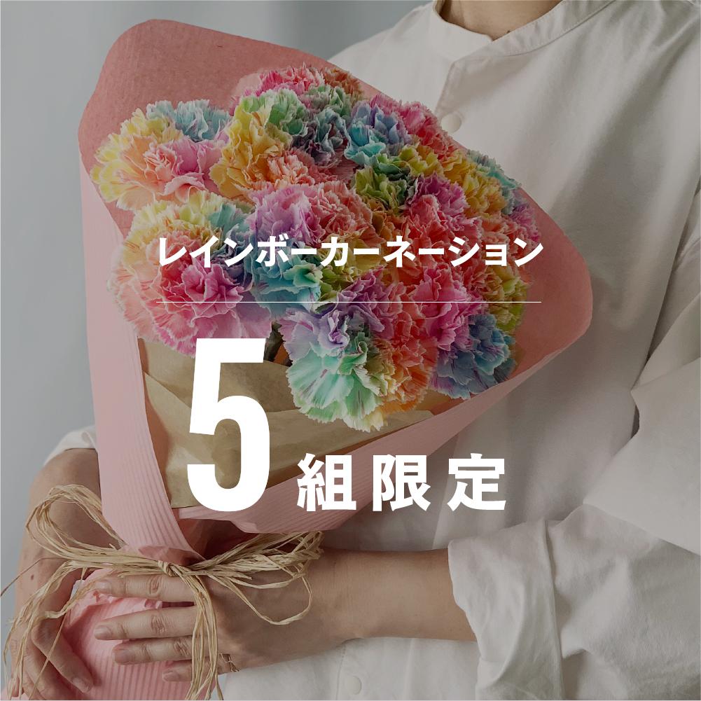 4/29(木・祝)お届け 限定5組 レインボーカーネーション