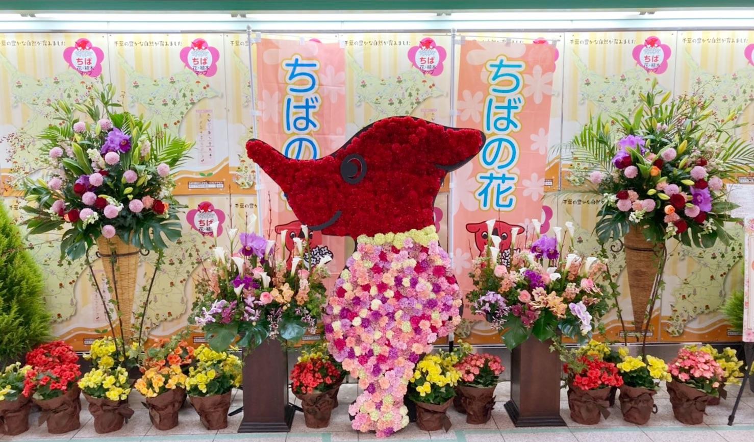 チーバくんのお花の装飾第二弾 千葉県 東武鉄道 柏駅