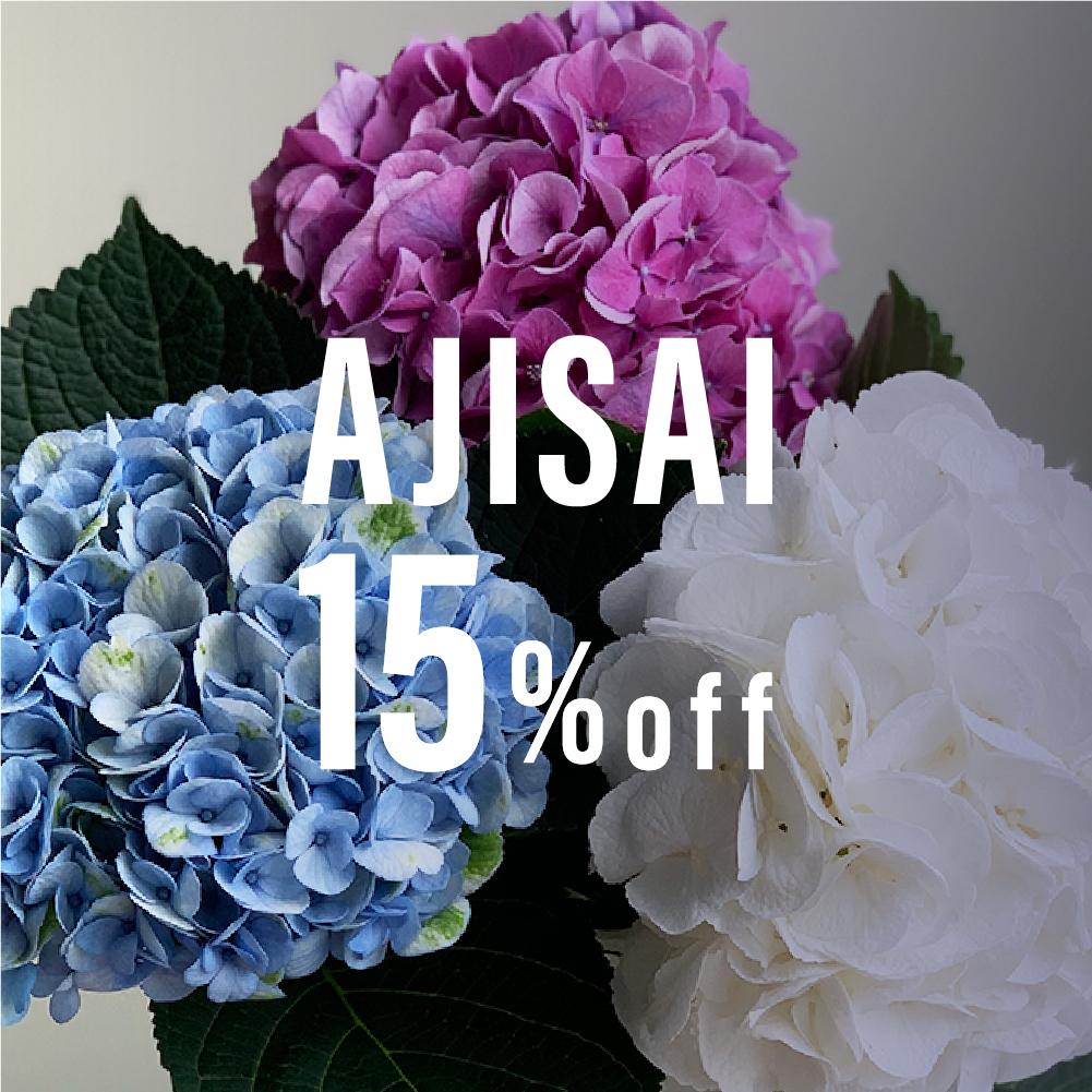 7月10日まで 再販!日本の花・紫陽花(千葉県・青木園芸)