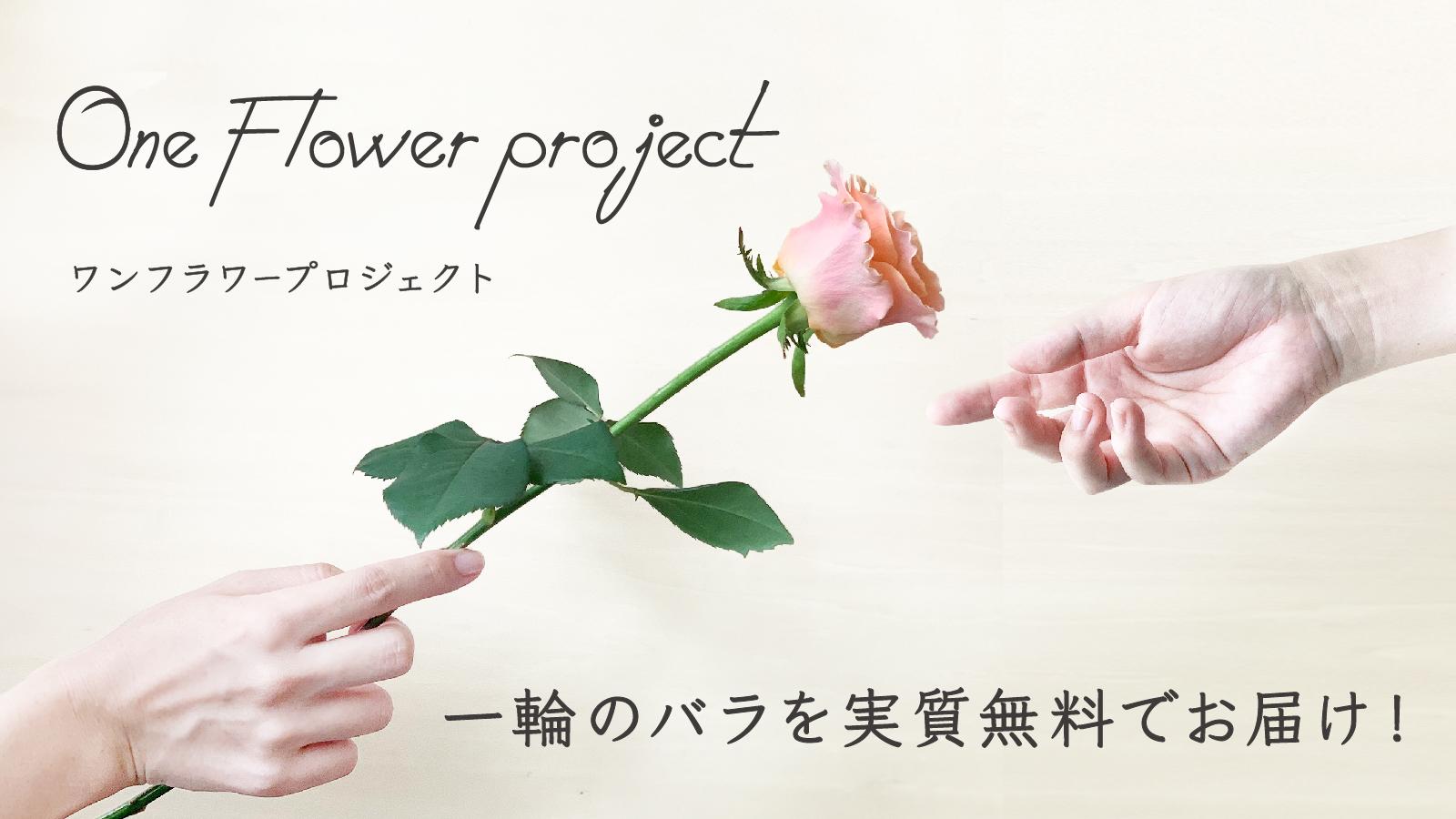〈予告〉「ワンフラワープロジェクト」紹介 TOKYO FM「山崎怜奈の誰かに話したかったこと」