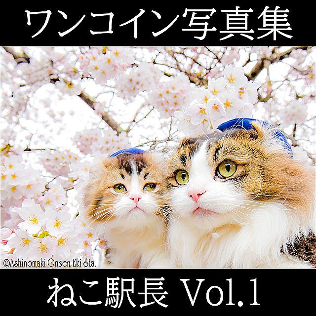 ★デジタル写真集、発売開始★