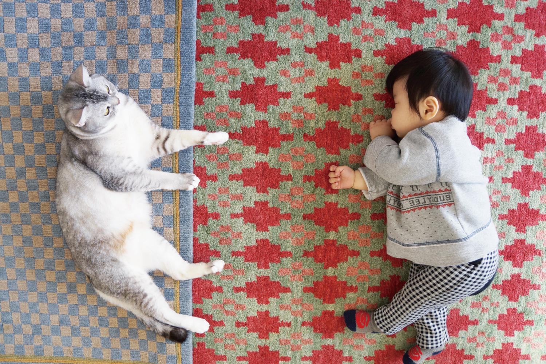 チベット絨毯とは