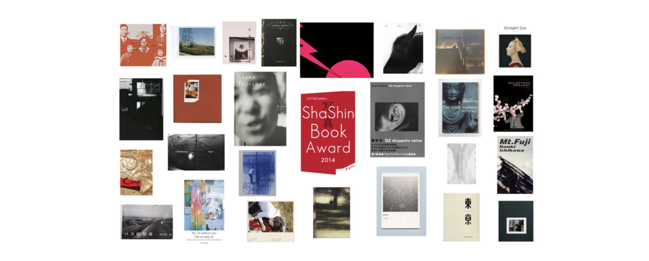 Rbooks 2014 archive
