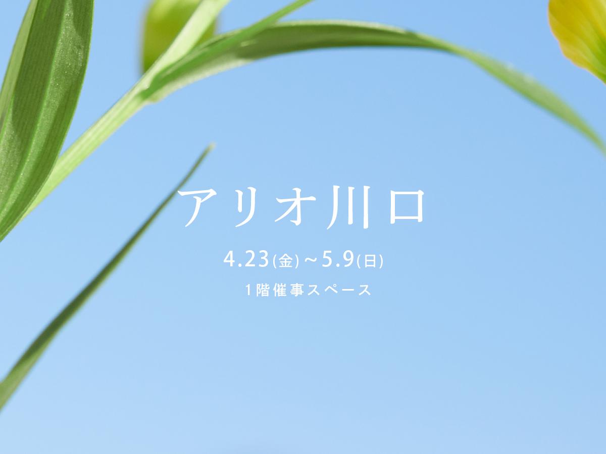 [埼玉]アリオ川口 4/23(金)~5/9(日)ポップアップストア開催いたします