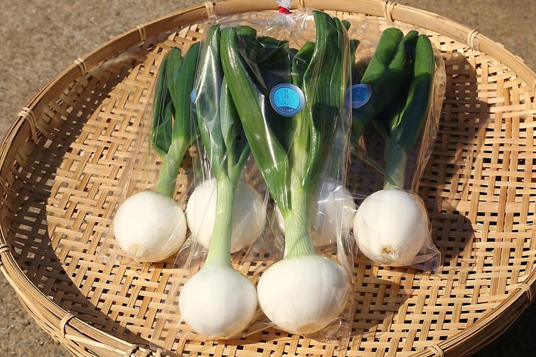 【やまわか農園からのご案内】春の甘劇ブランド商品を紀ノ国屋さまでお取り扱いいただいております!