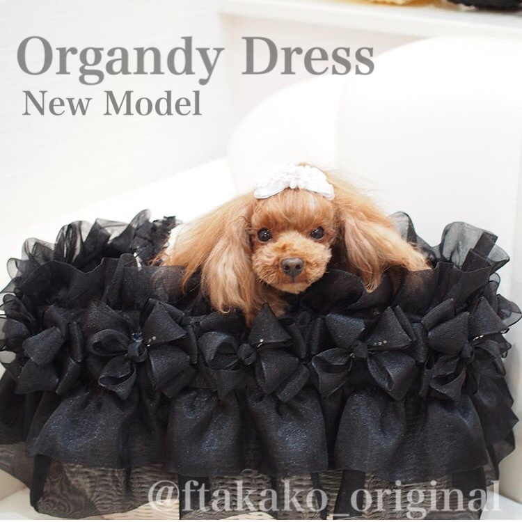 オーガンジー ドレス