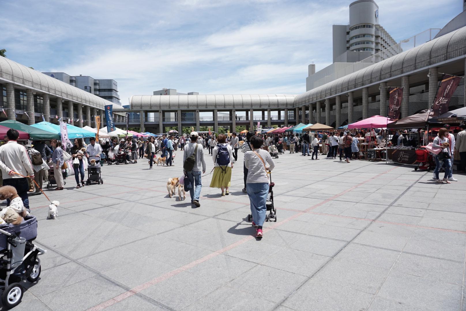 神戸ワンワンマルシェに出店してきました