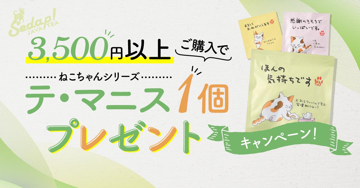 【お得な情報】3500円以上購入のお客様へのプレゼント