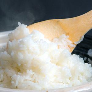 【令和3年産新米】小松の米食べ比べセット