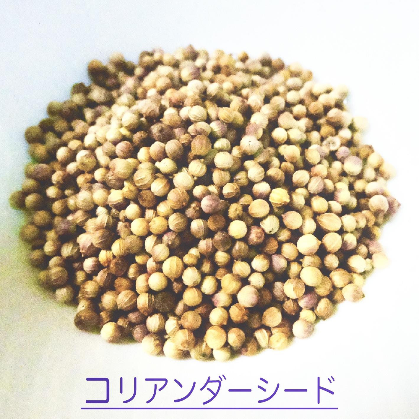 クラフトコーラの食材紹介 vol.6 コリアンダーシード