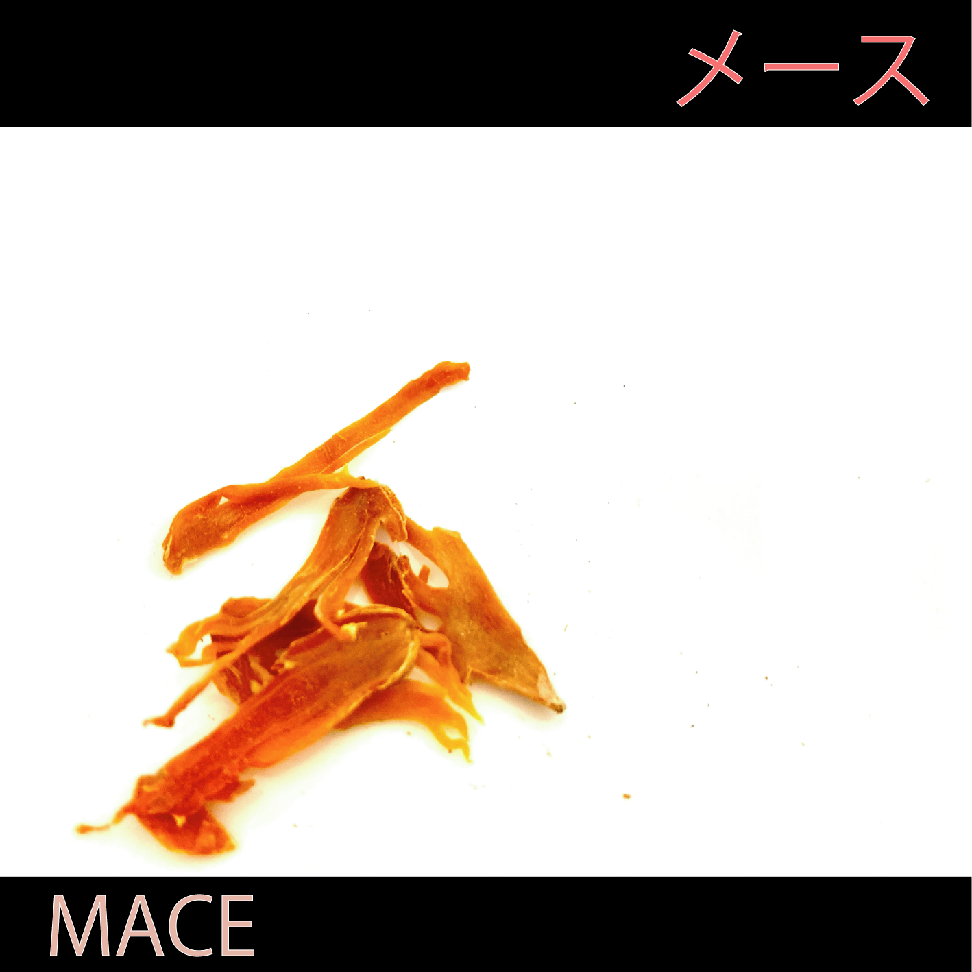 クラフトコーラの食材紹介 vol.9 メース