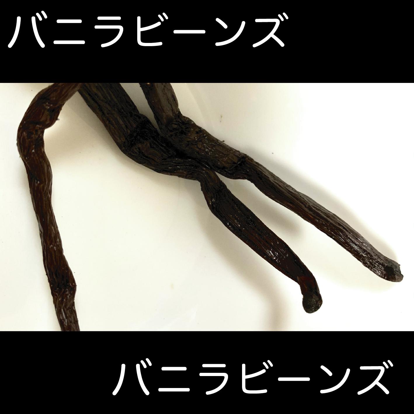 クラフトコーラの食材紹介 vol.7 バニラビーンズ