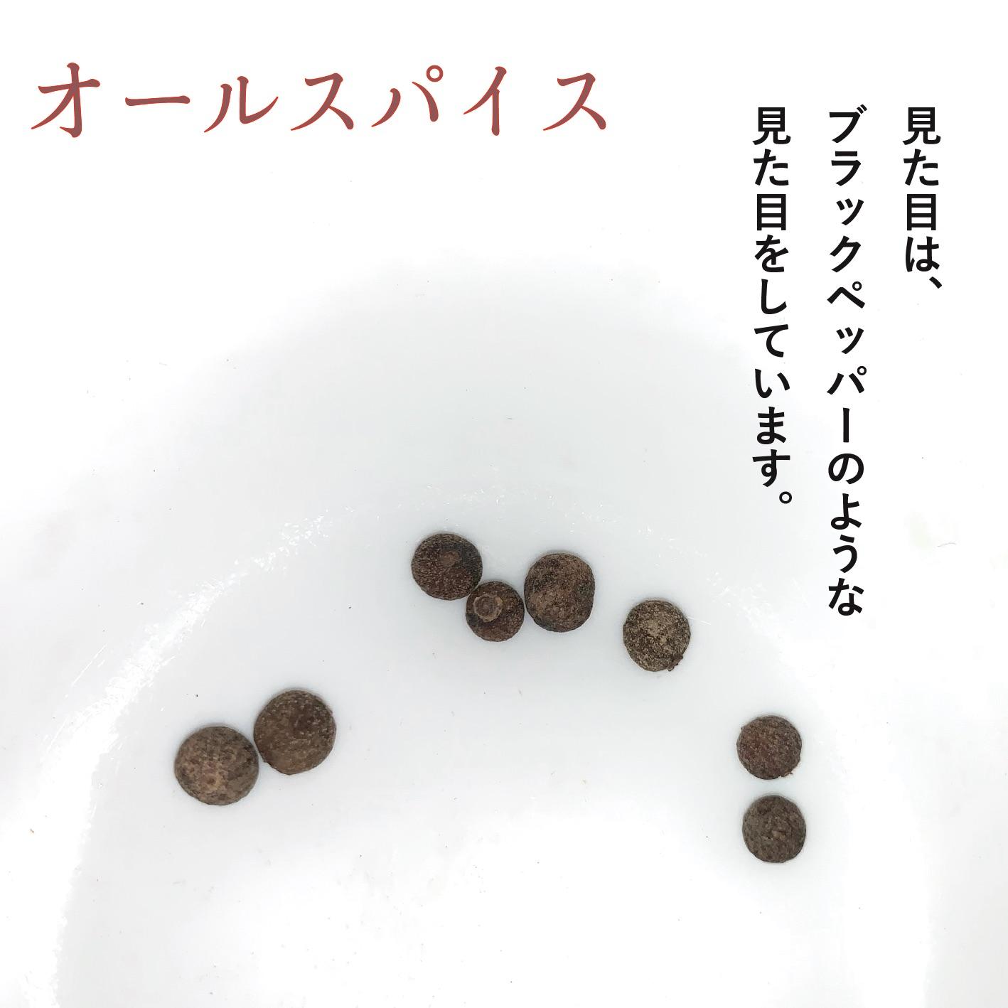 クラフトコーラの食材紹介 vol.5 オールスパイス
