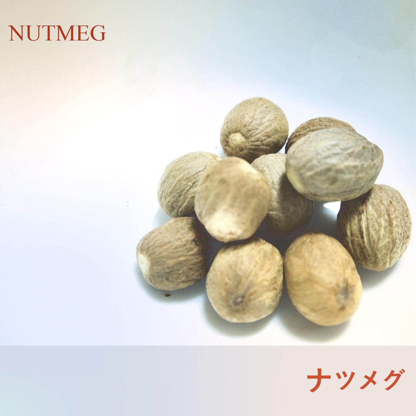 クラフトコーラの食材紹介 vol.4 ナツメグ