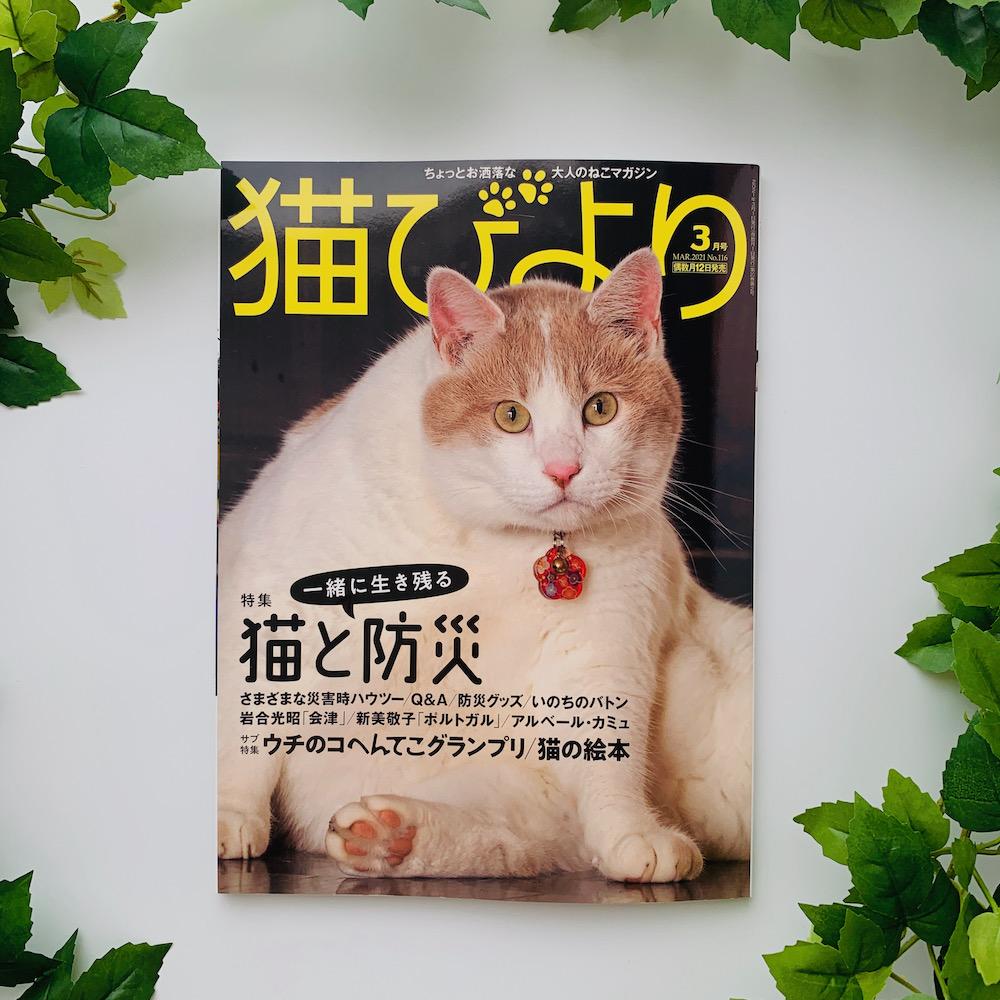 雑誌『猫びより』に掲載されました