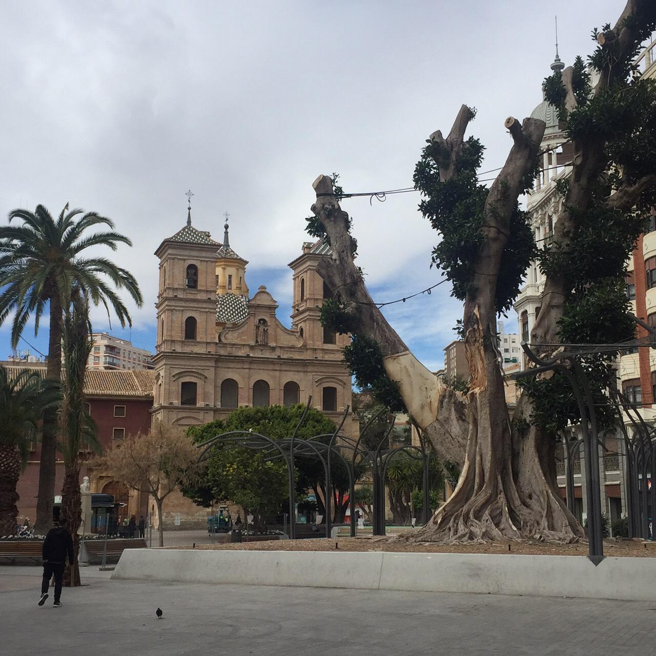 スペインのMurcia(ムルシア)に行ってきました