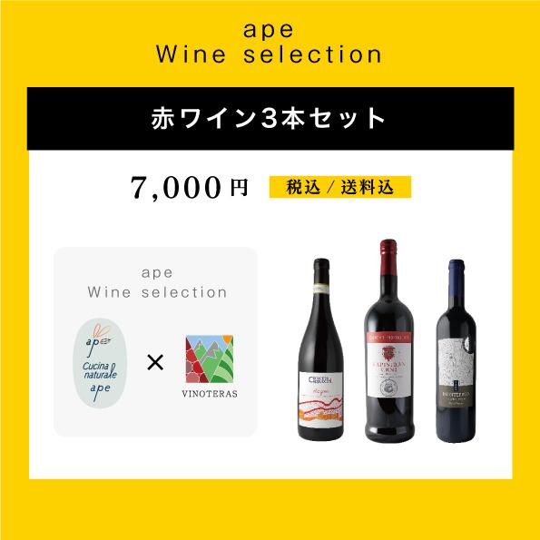 ペアリングコラボ★ヴィノテラス✖︎apecucinanaturale★ 赤ワイン