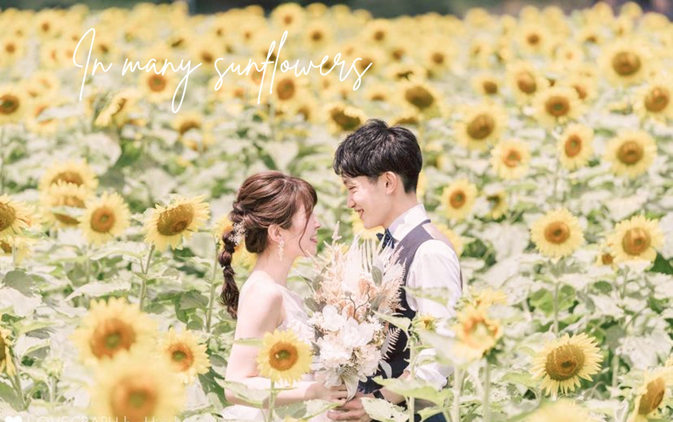 Many sunflowers and CarryBouquet♡