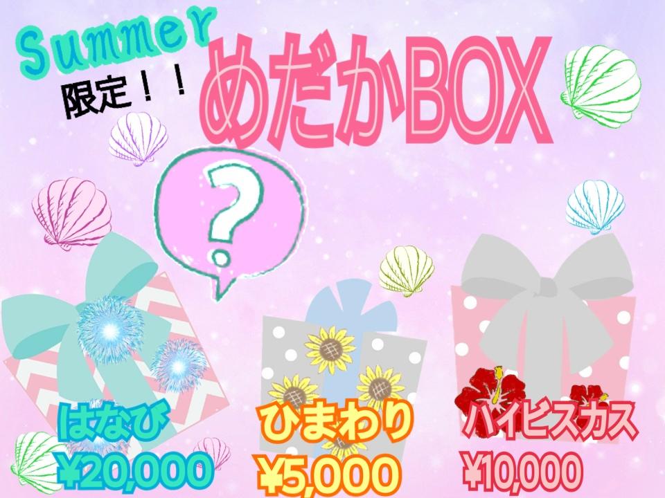 夏限定 めだかBOX販売スタート!