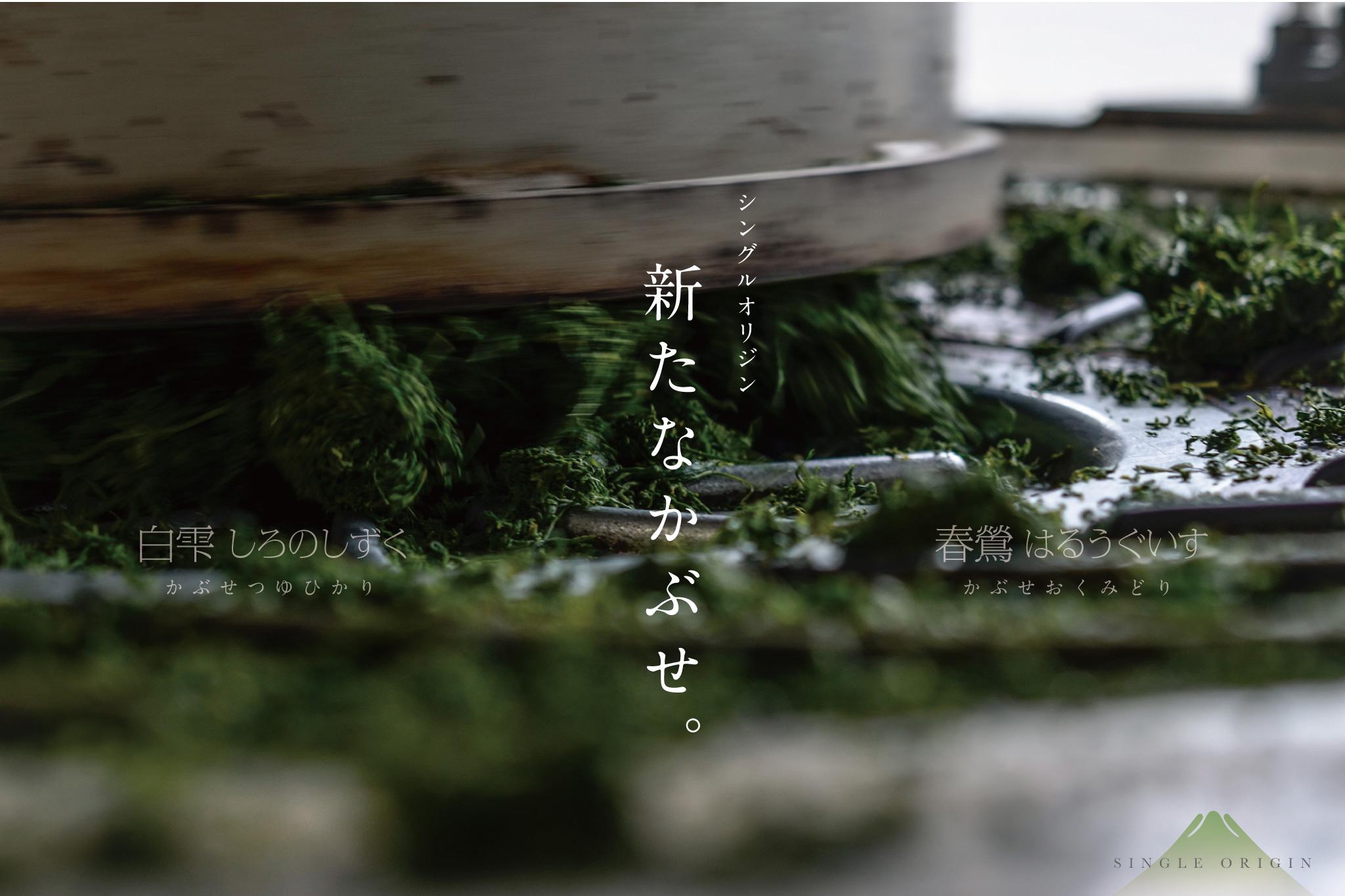 新たなシングル手摘みかぶせ「白雫」「春鶯」リリースです!