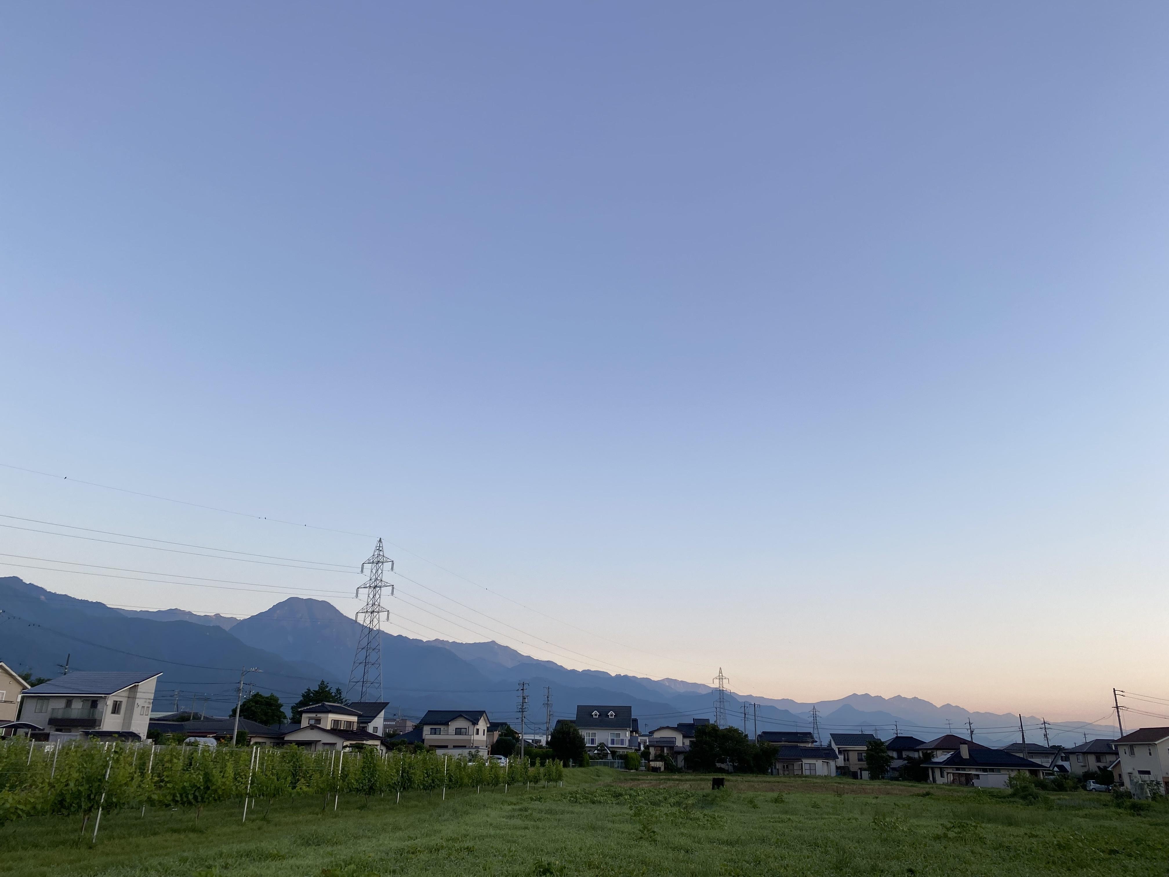 安曇野夏いちご始まりました!