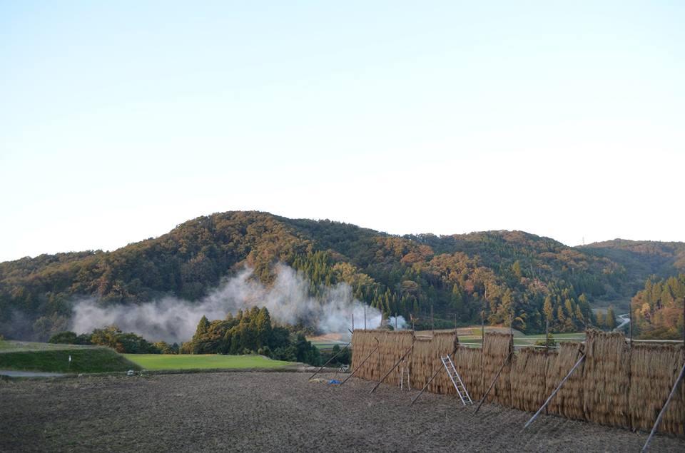 H30度産の天日干し米、減農薬環境保全米 完売のご連絡