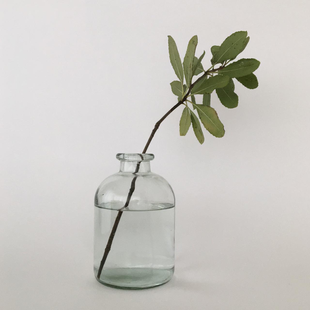 Jardin Flower Vase|フラワーベース ジャルダン