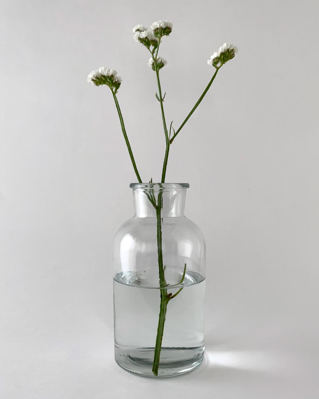 Braxton Vase|フラワーベース