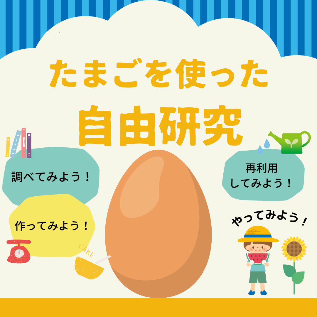 【調べてみよう!】たまごを使った自由研究 日本はたまごをたくさん食べる国?