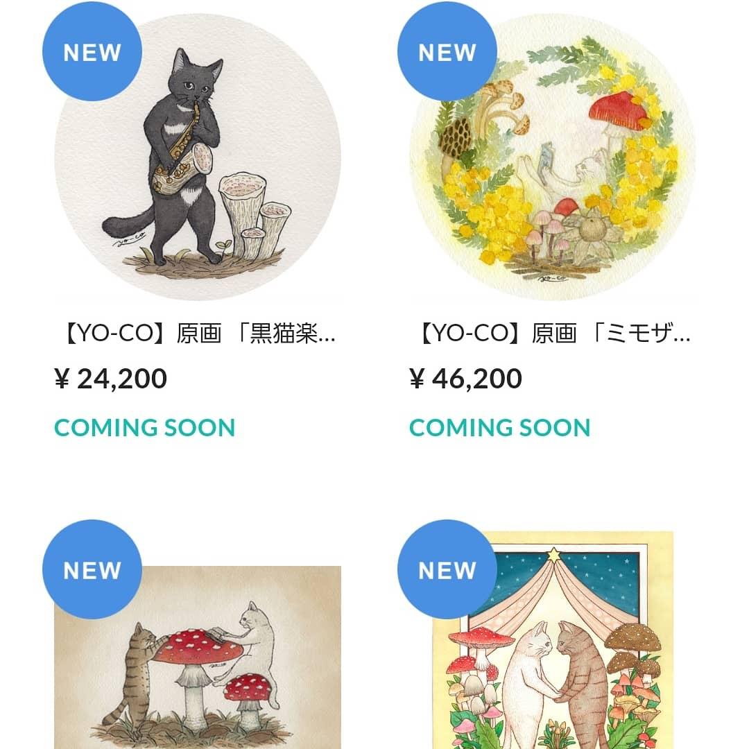9月4日12:00からWEB展示販売スタート!!