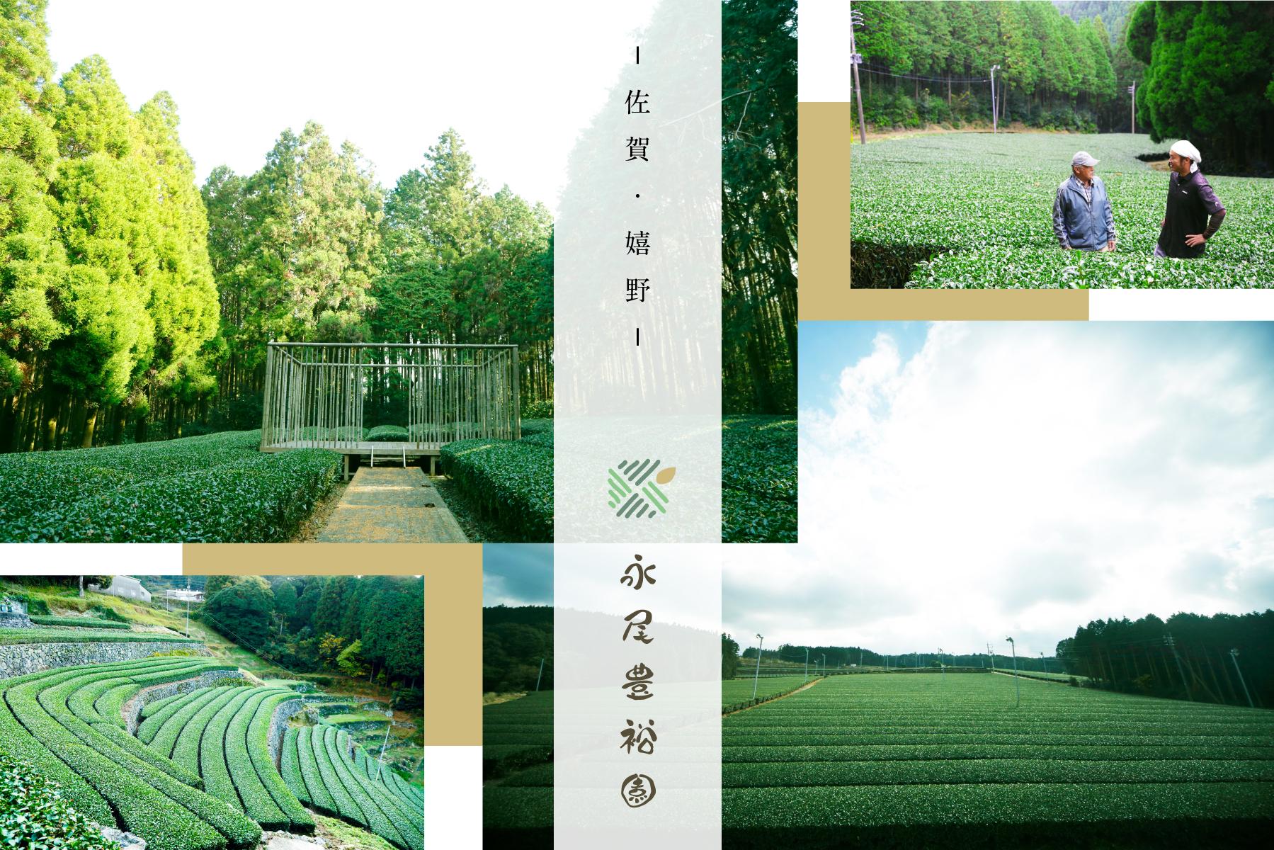 永尾豊裕園 公式サイト OPEN