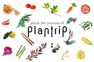 <plantrip β版> online shopについて