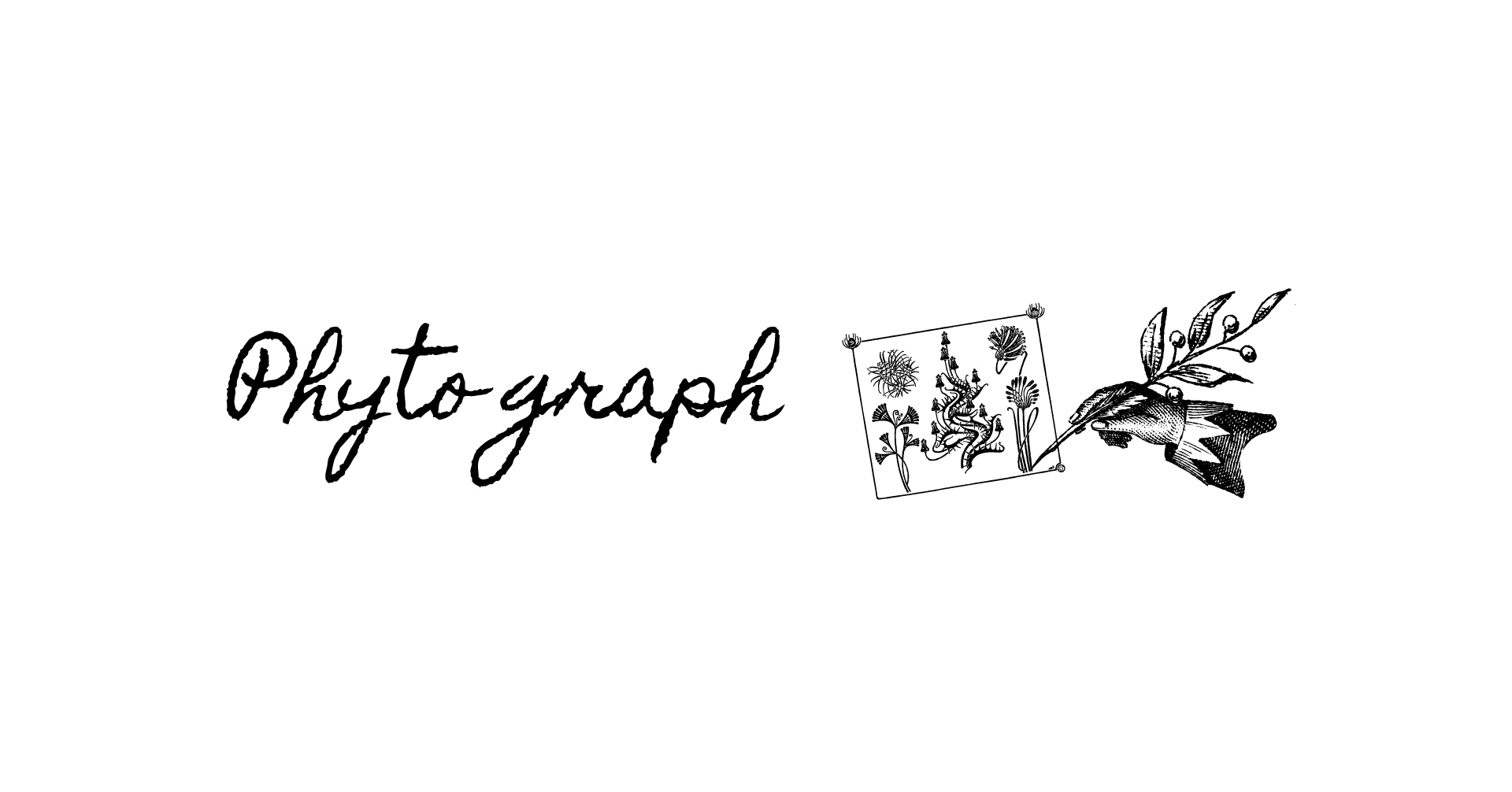 フィトグラフ|Wellな植物図鑑