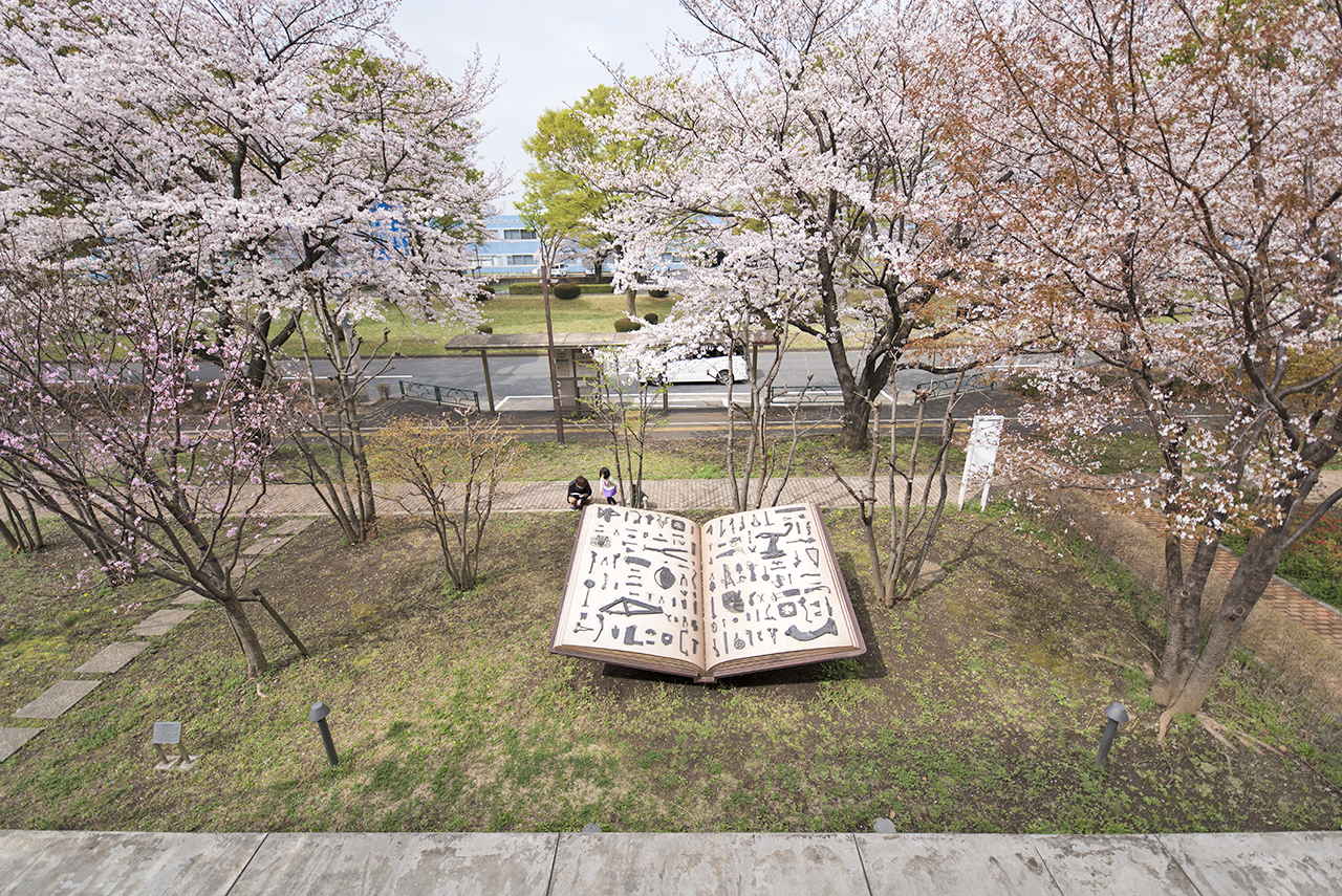立川も、桜が満開。