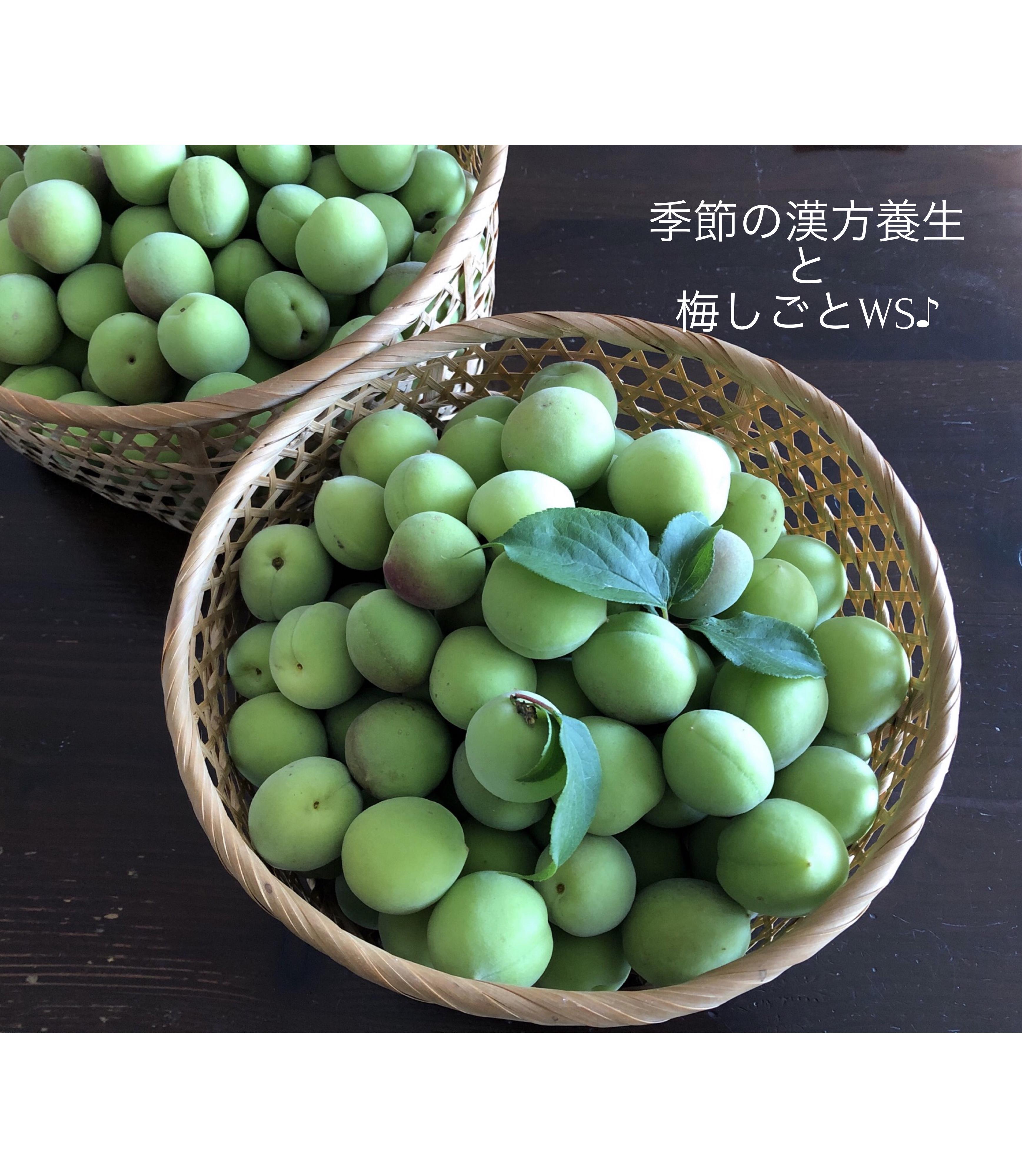 季節の漢方養生と梅しごと♪