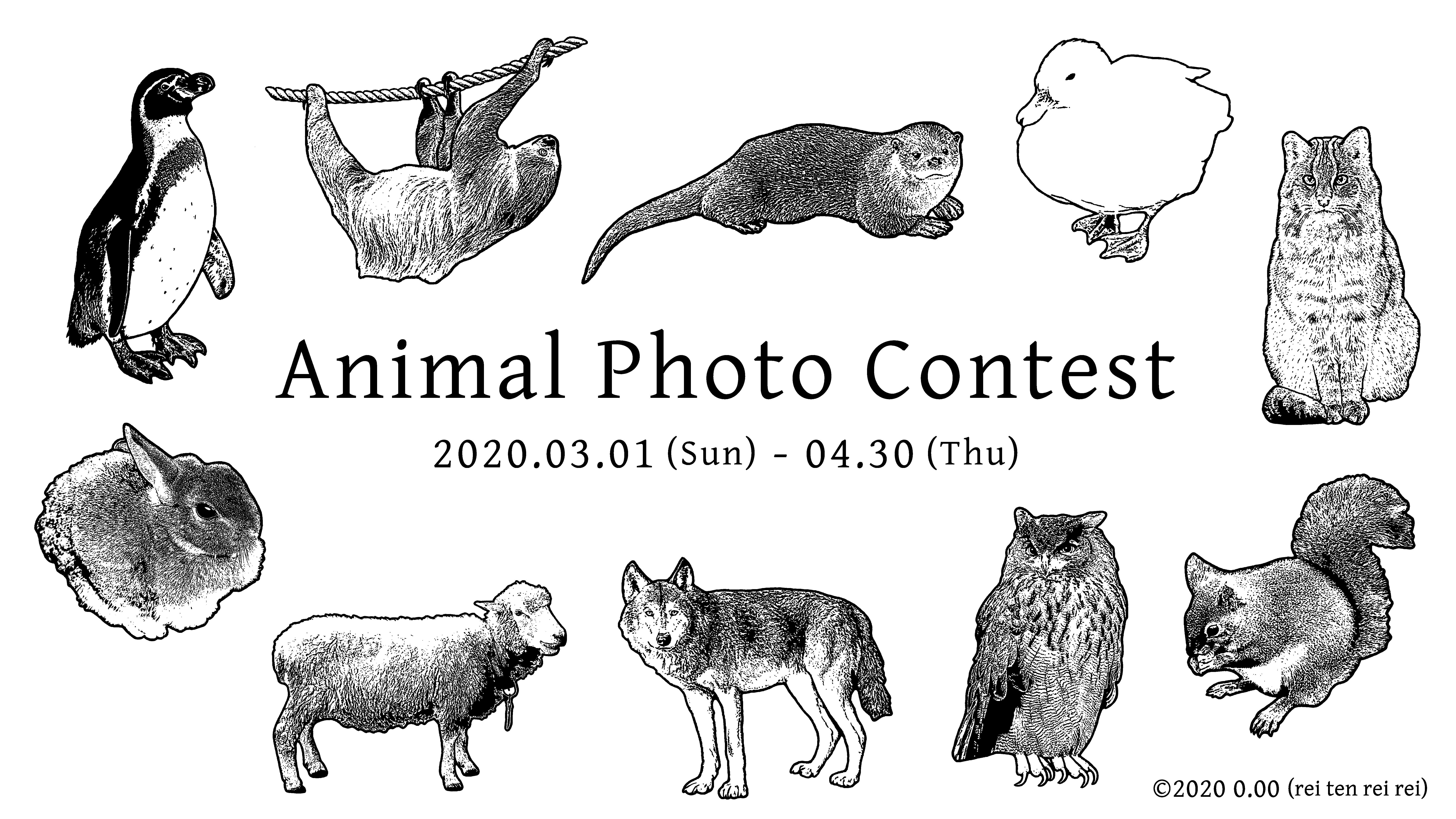 動物写真コンテスト (2020/3/1〜4/30)