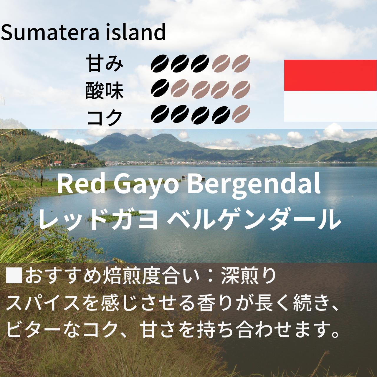 【新商品】レッドガヨ ベルゲンダール Qグレード