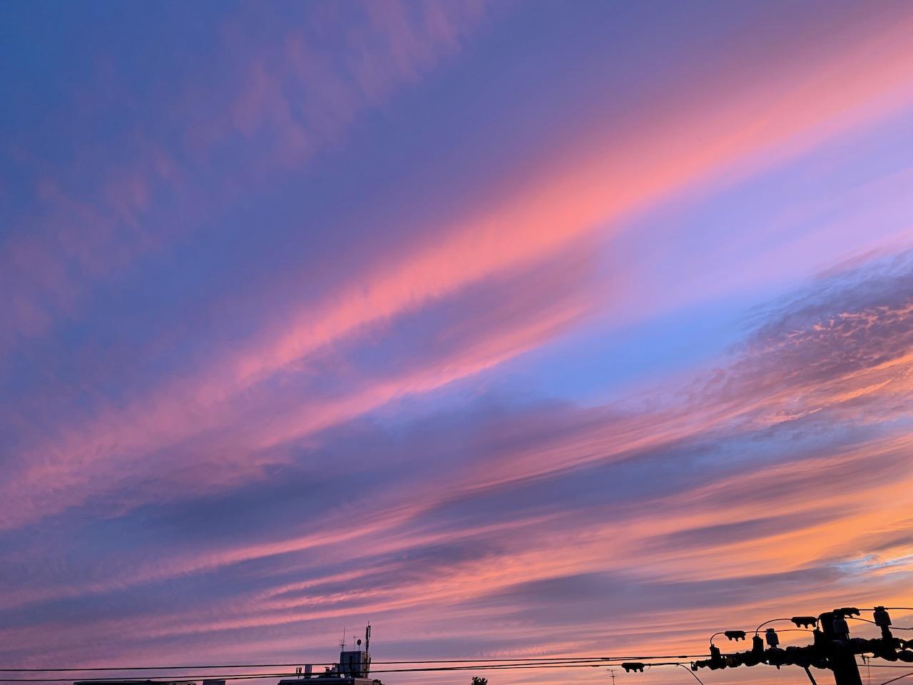 虹龍、美しい夕暮れ時