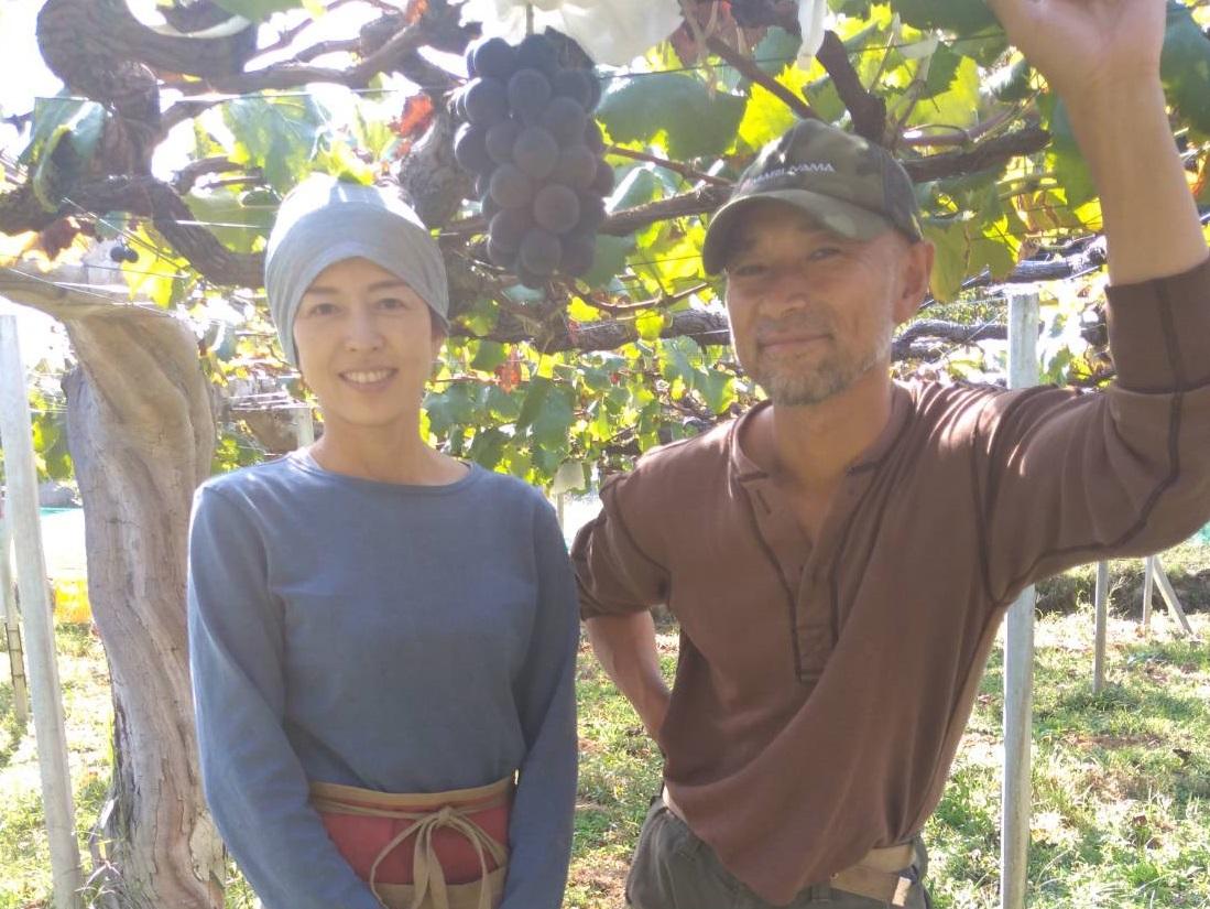 スイパラ農園組合 農家インタビュー【ぶどう農家 丸子さん】