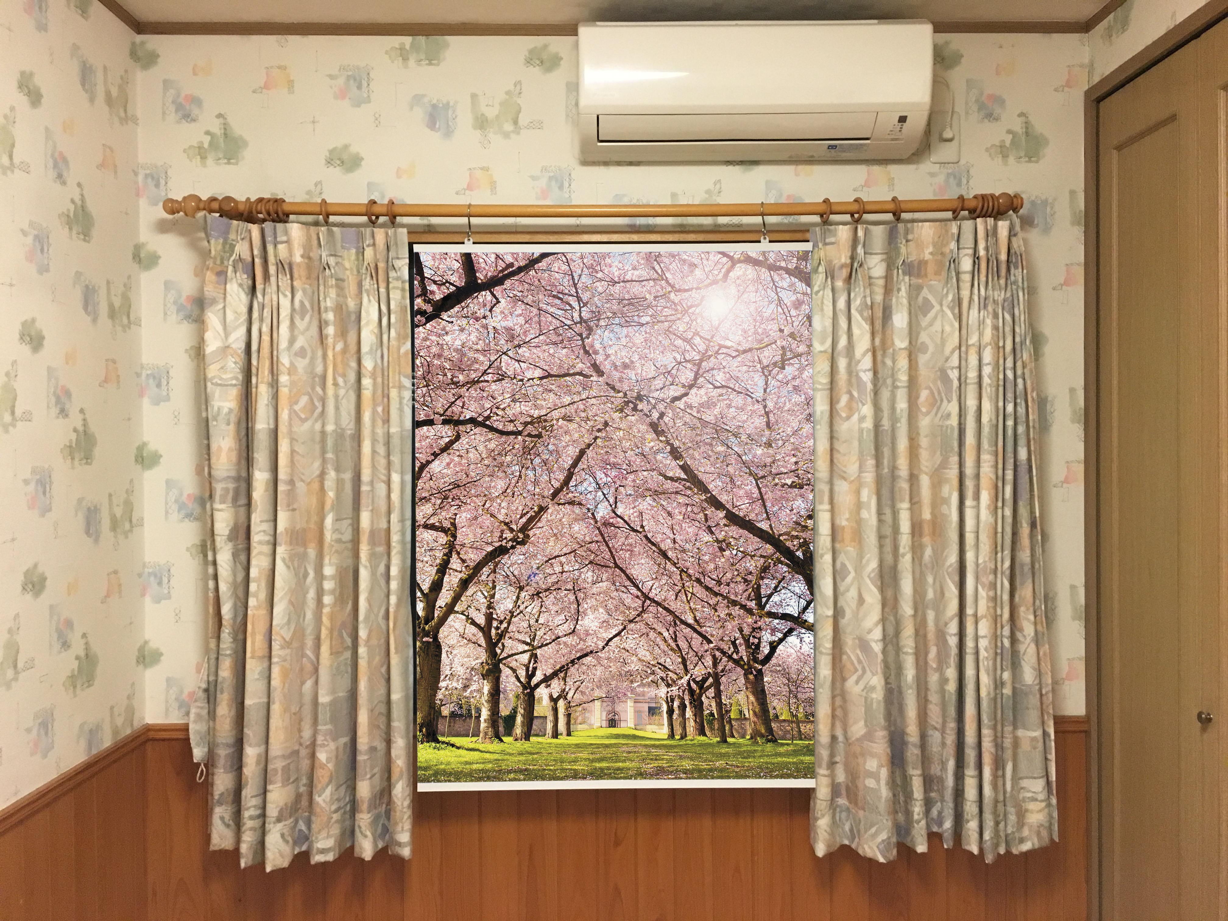自宅で気軽に背景ありの写真が撮れる「背景タペストリー」