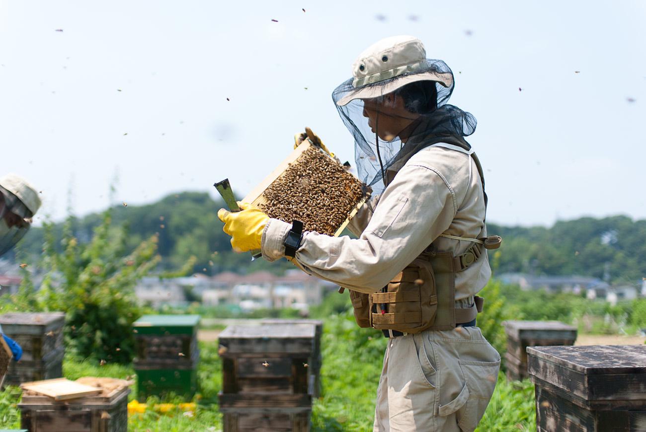 green honey 3つのこだわり