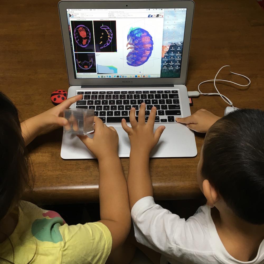 子どもの興味関心を引出す! ダンゴムシの3Dデータをくるくる回そう