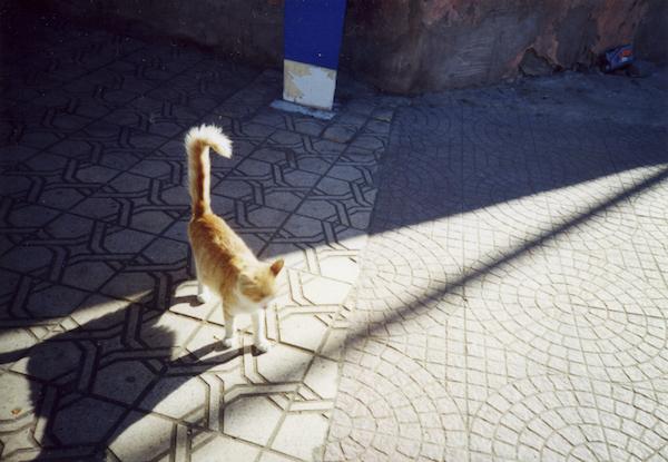 Morocco_06
