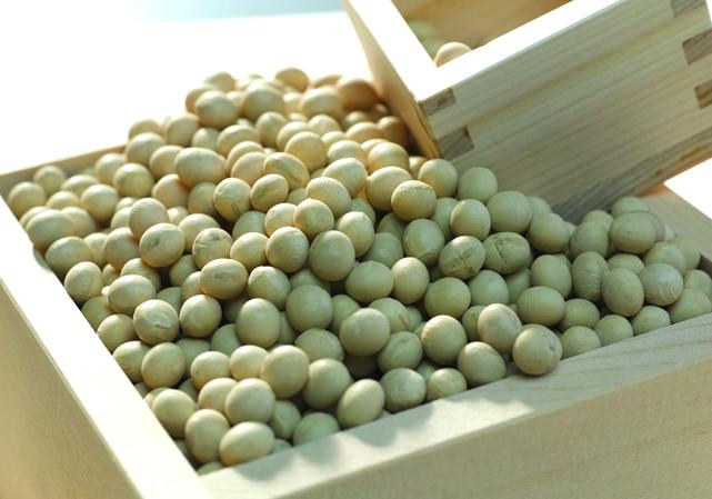 国産大豆を厳選して造ったお豆腐。大豆の違いが生み出す、お豆腐のあたらしい楽しみ方!