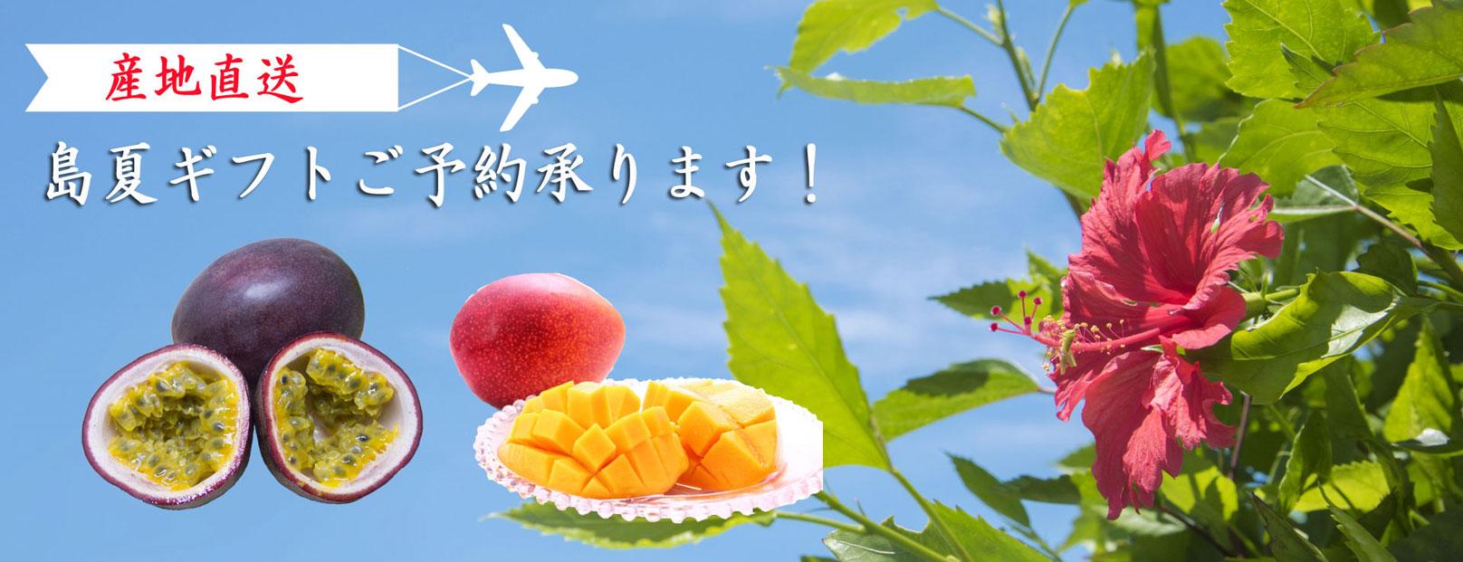 ◆◆ 商品  2 ◆◆ パッションフルーツ
