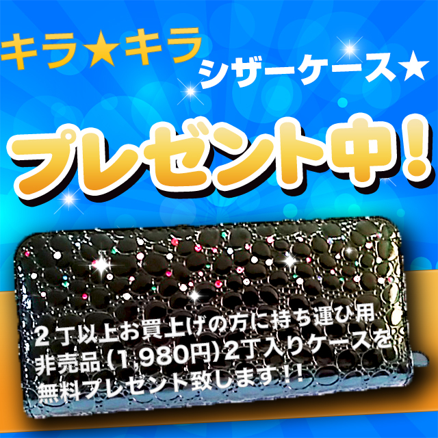キラキラシザーケース☆プレゼントキャンペーン☆