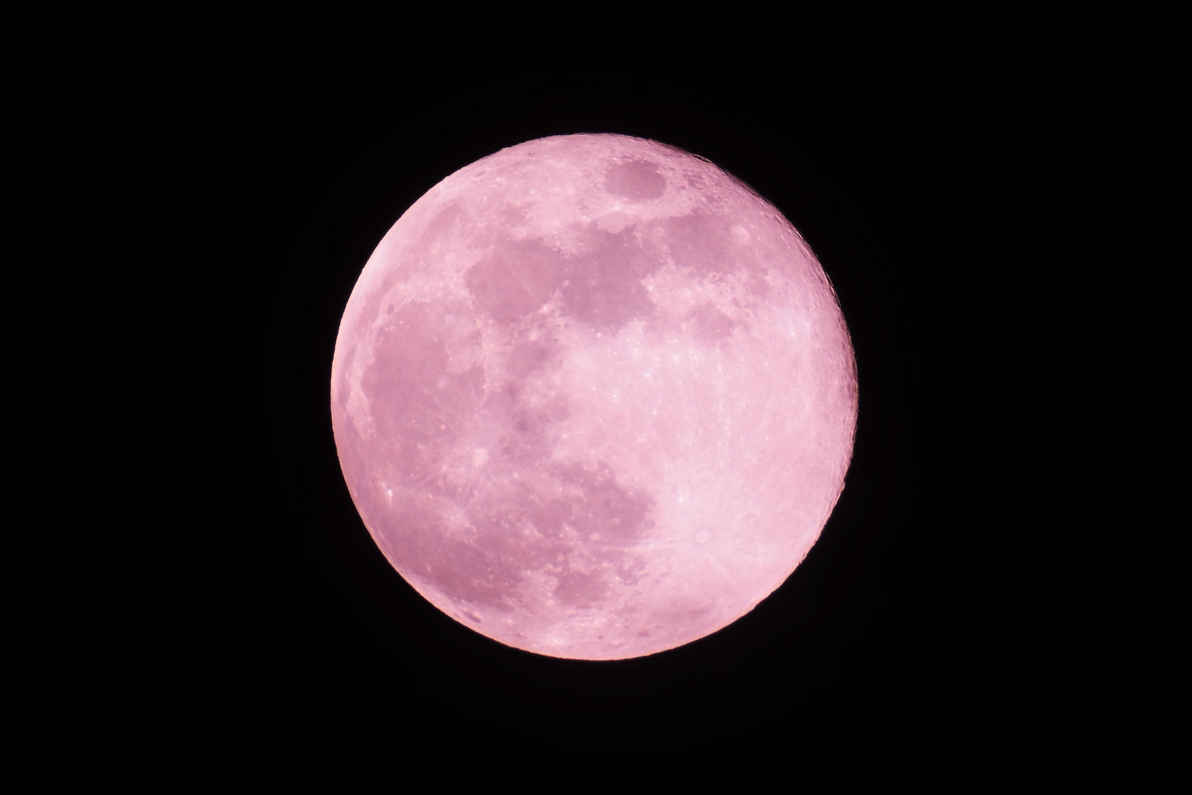 明日は月食
