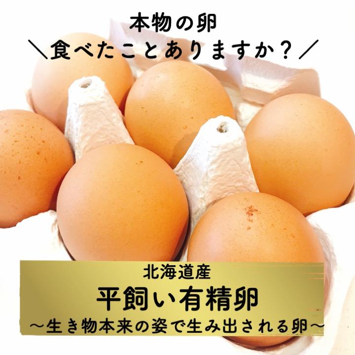 北海道産「平飼い有精卵」