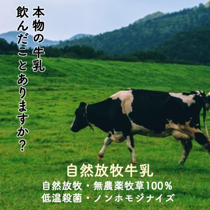 北海道産「自然牧草牛乳」