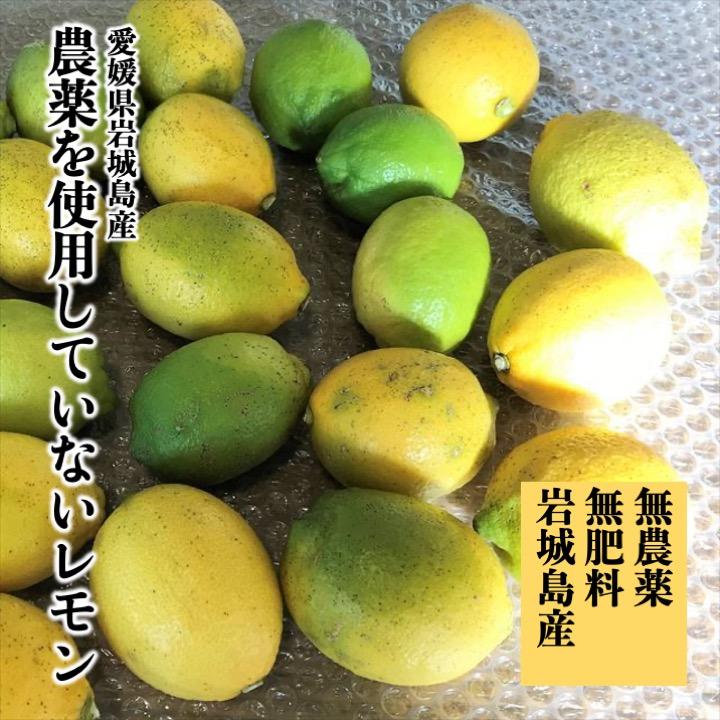 愛媛県岩城島「農薬を使用しないレモン」